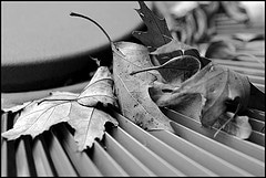 An outdoor air conditioner unit with leaves on it